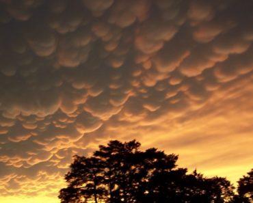 Pilviä on lukuisia erilaisia, mutta niihin harvemmin kiinnittää huomiota. Listafriikki halusi olla pilvien asialla ja esittelee kymmenen näyttävää, mutta harvinaista pilvimuodostelmaa.