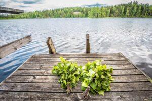 Unescon aineettoman kulttuuriperinnön luetteloon lisättiin tänä vuonna mielenkiintoisia kohteita suomalaisen saunaperinteen lisäksi.