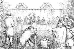 Minkälaisia oikeusjuttuja saadaan aikaan, kun rikoksesta syytetty on eläin? Tässä 10 erikoista tarinaa.