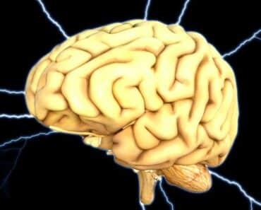 Ihmisen aivot ovat täysin käsittämätön kokonaisuus ja tällä listalla paneudutaan tuon elimen saloihin paneudutaan.