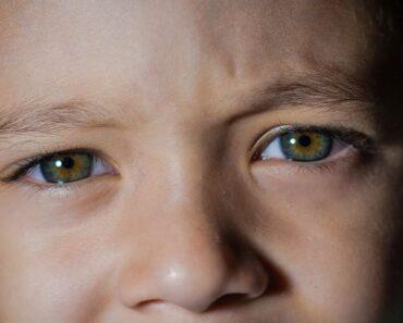 Jälleensyntyminen kiehtoo; uskoo siihen tai ei. Tässä 10 tarinaa reinkarnaatiosta.
